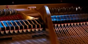 interior of a grand piano, harp, strings, dampers